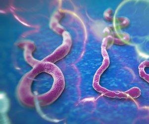 EBOLA ajunge în FRANŢA: Primul pacient  infectat cu acest virus ar putea fi repatriat la Paris!